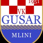 Redovna skupština V.K. Gusar